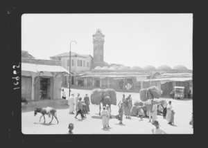 A view of al-Majdal, Palestine, in the 1930s, from the American Colony photographic collection. (Library of Congress)